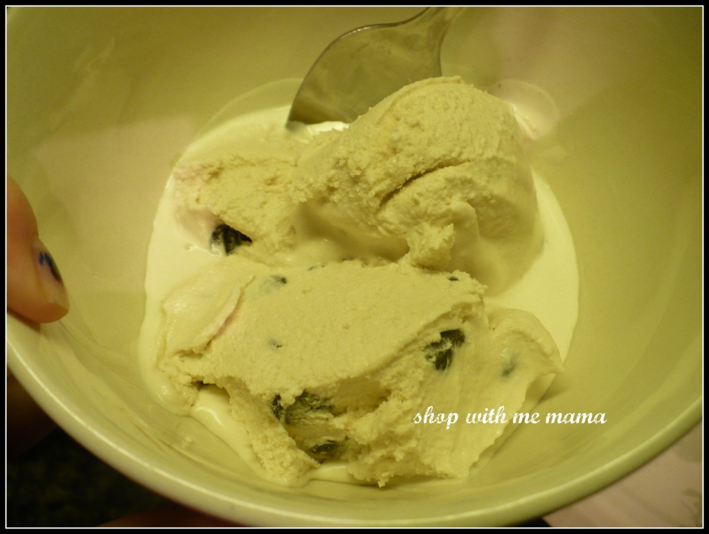 vanilla chocolate chip homemade ice cream
