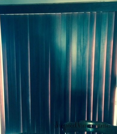 Dressing up my sliding glass door with blinds from for Sliding glass doors dressings
