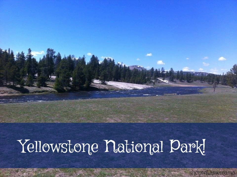 Yellowstone National Park Is Absolutely Breathtakingly Beautiful!