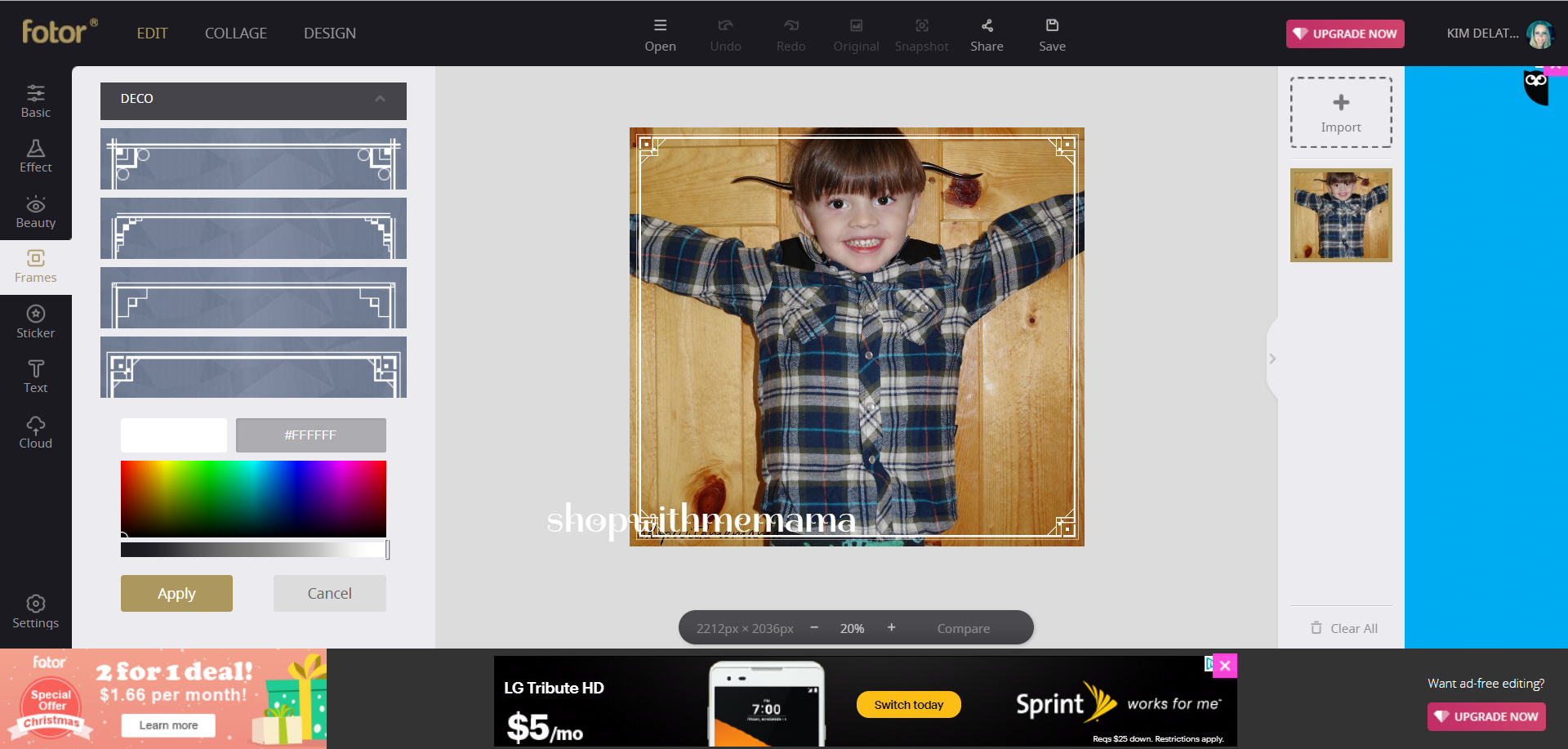 Create Beautiful Collages, Edit Photos, Design Graphics And More With Fotor