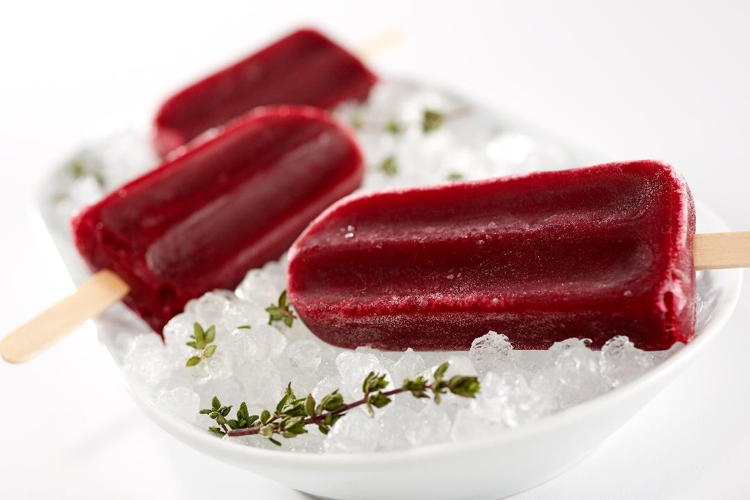 Hibiscus Blueberry Popsicles!