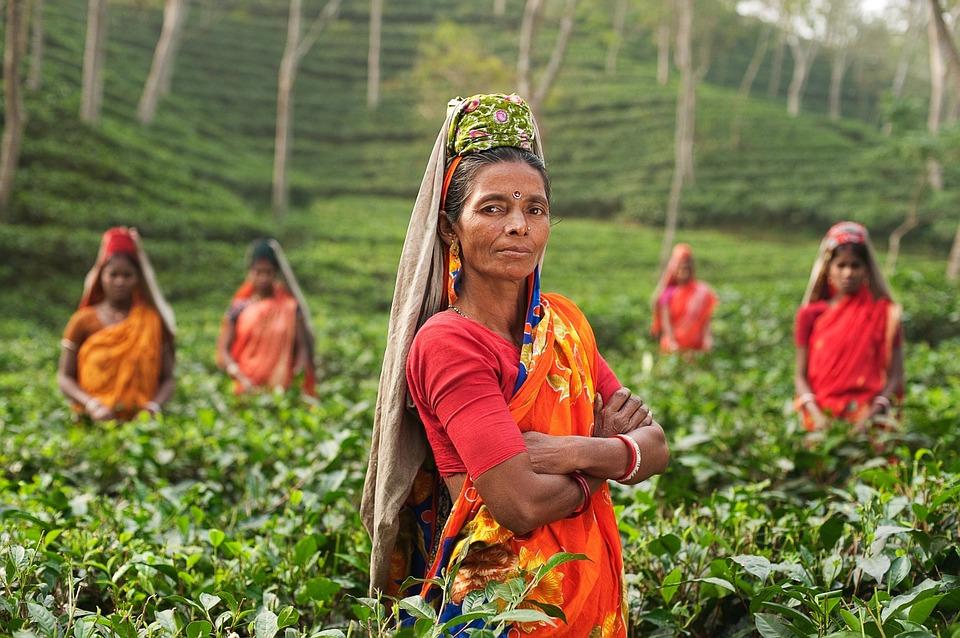 6 Best Experiences Of India
