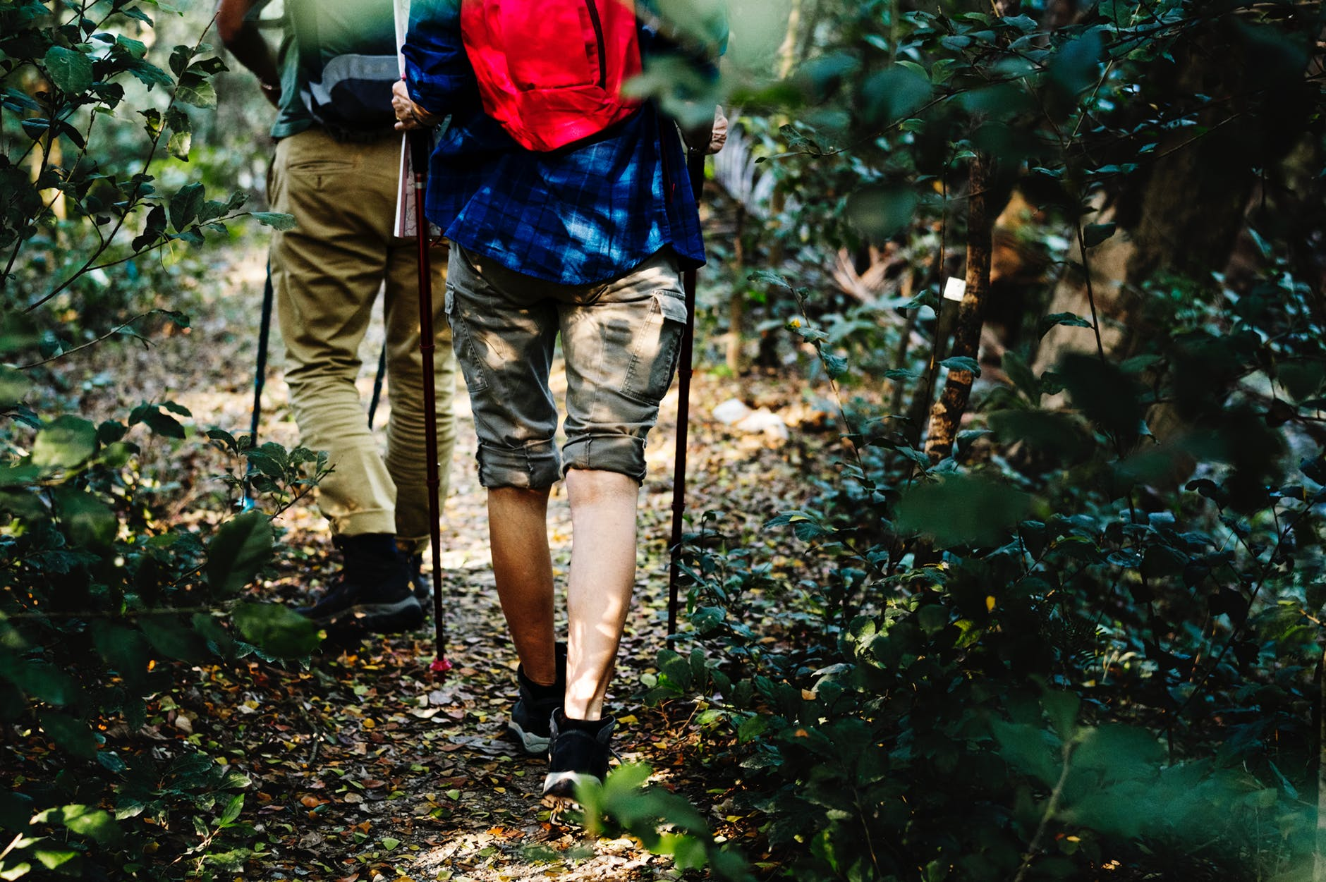 trail hiking and backpacking