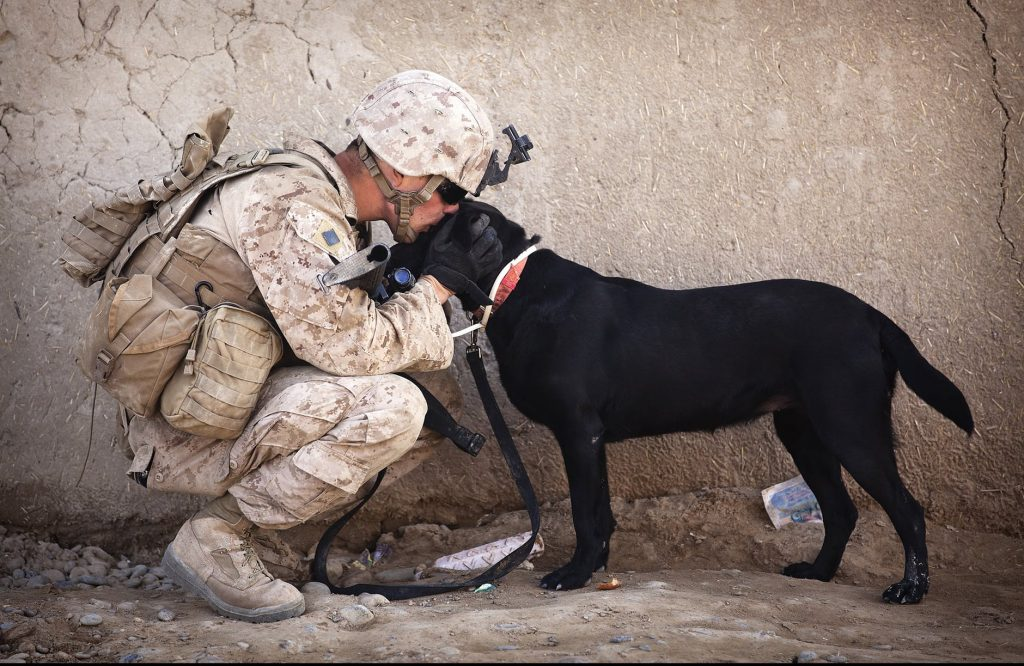 military man with his dog