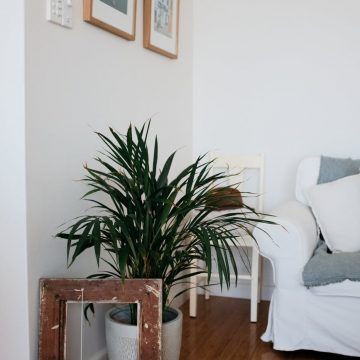 Updating Your Home Ready For Spring And Summer