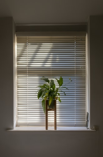 What Are Day Night Blinds