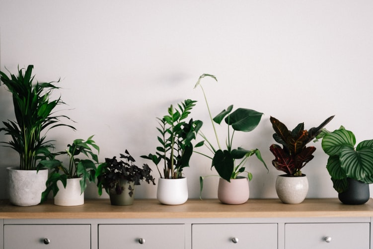 Add Fresh Air To Your Home With These Brilliant Ideas